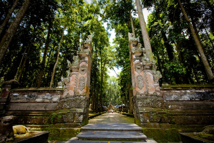 10 Things to See and Do in Bali