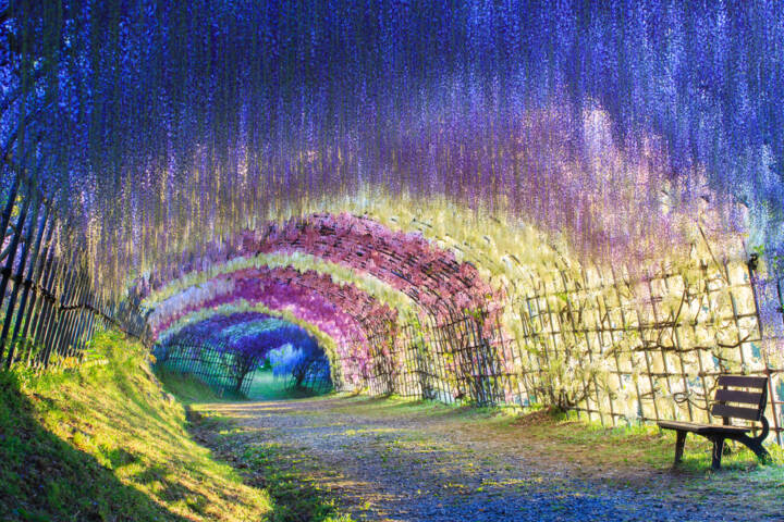 8 Destinations with Surprising Natural Phenomena