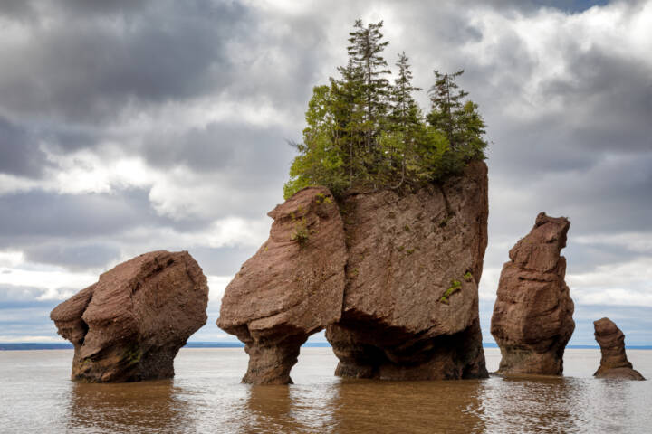 The Top Things to See and Do in New Brunswick