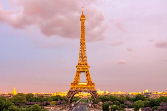 The French Eiffel Tower in Evening