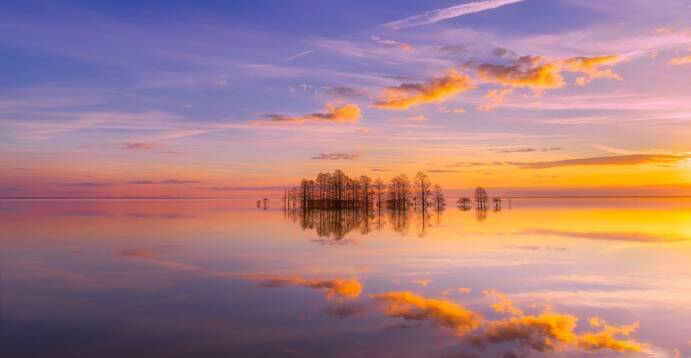 Reflective Lake in Charlotte North Carolina