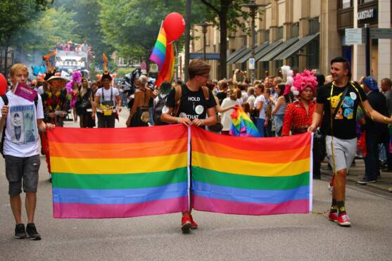 St. Louis Gay Pride Parade Walkers