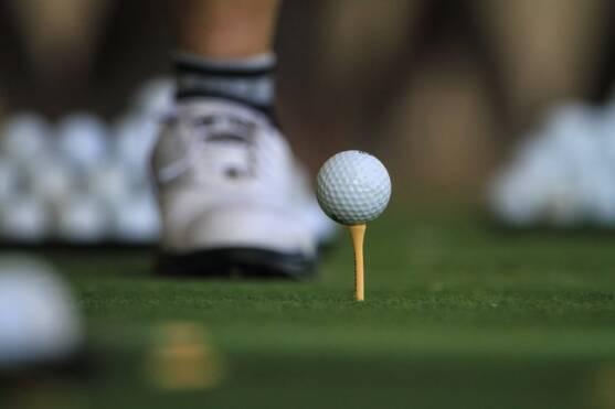 Golf courses in ANN ARBOR