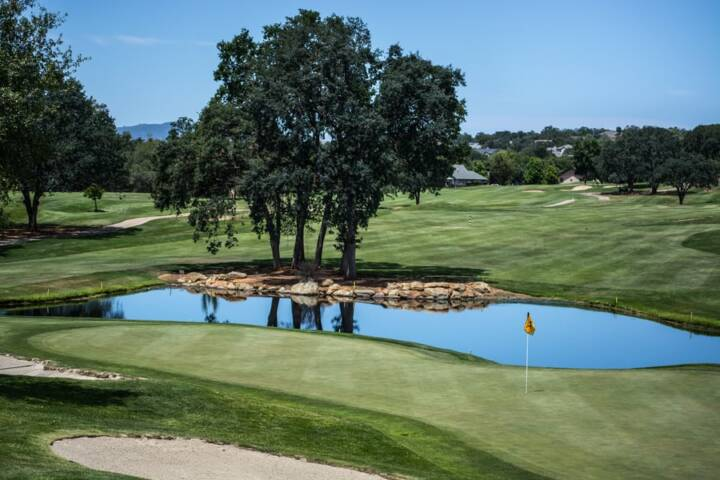 5 Exciting Golf Courses to Play in Newnan